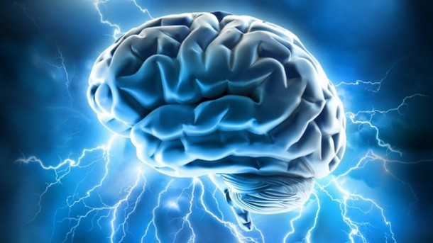 What are the best diets for the brain
